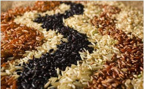 Bột gạo lứt mè đen là thực phẩm chứa hàm lượng dinh dưỡng cao vừa là một vị thuốc giúp hỗ trợ chữa nhiều căn bệnh mãn tính và giúp lợi sữa cho các mẹ