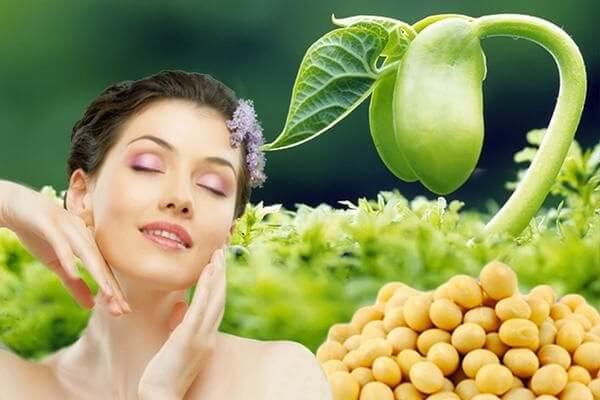 Tác dụng của mầm đậu nành nguyên xơ đối với phụ nữ, nam giới