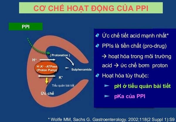 Thuốc PPI là gì, cơ chế tác dụng của thuốc ức chế bơm proton PPI
