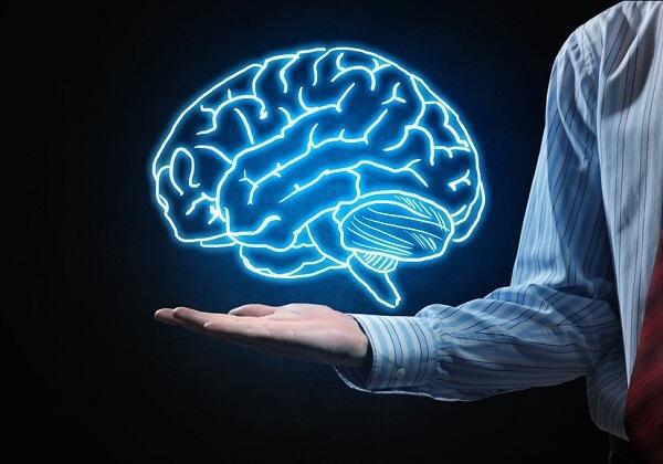 Top 4 món ăn tốt cho trí não mà bà nội trợ cần biết