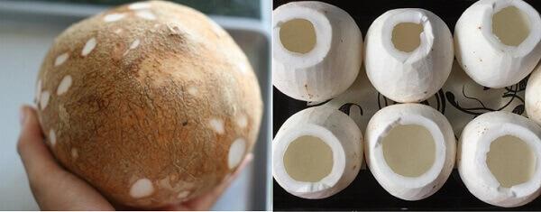 Làm mứt dừa bạn nên chọn dừa bánh tẻ