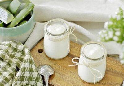 2 cách làm sữa chua nha đam giảm cân, không bị đắng nhanh và dễ nhất ngay tại nhà
