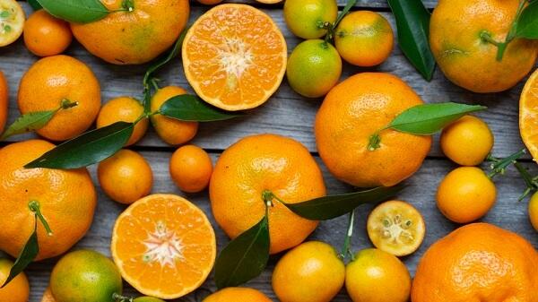 Trái cây có rất nhiều chất dinh dưỡng, chất xơ và vitamin