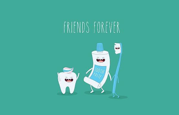 Hàm răng con người có bao nhiêu cái răng?
