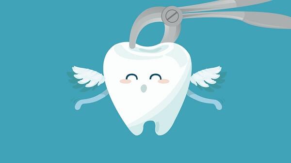 Tỉ lệ số người không có đủ răng khôn từ 20%-30%