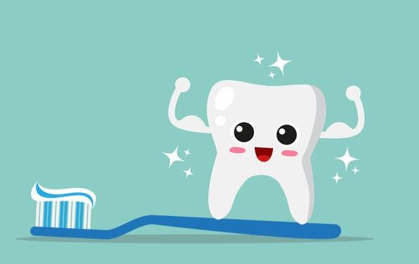 Đánh răng là thao tác quan trọng giúp cho răng miệng luôn trong tình trạng sạch sẽ