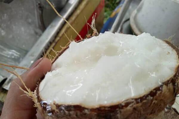 Một trái dừa sáp ở Cầu Kè Trà Vinh bằng 20 trái dừa bình thường và khi hút hàng giá tăng đến 250.000 đồng/trái.