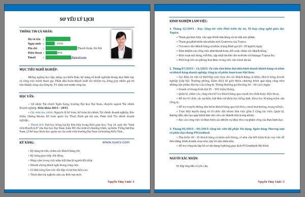 Career Objective trong CV là một vài dòng nói về mục tiêu nghề nghiệp của bản thân