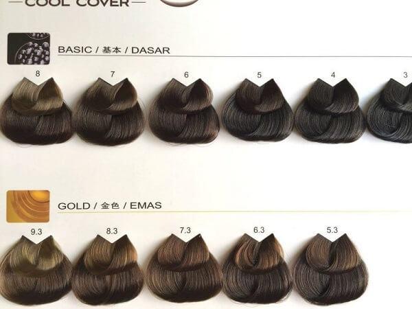 Một số màu nổi bật bên trong bảng màu thuốc nhuộm tóc của L'oreal được nhiều người ưa chuộng