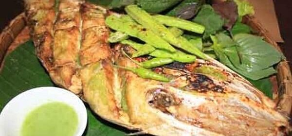 Cá da bò là cá gì, Cá da bò nướng muối ớt và 5 món ngon chế biến từ cá bò da