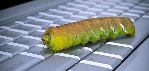 Worm có khả năng tự nhân bản trên chính nó