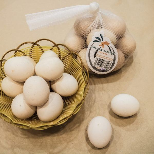 Giá trị dinh dưỡng của trứng gà so với sữa là 84,5%