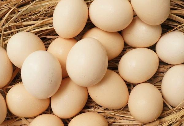 Trứng gà được xem là nguồn thực phẩm giàu choline.