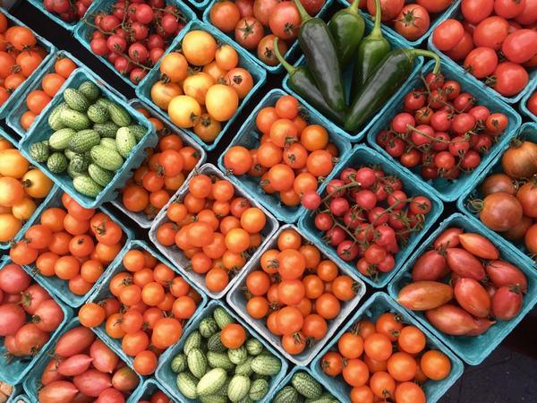 Công dụng của cà chua bi chỉ được phát huy khi đảm bảo chất lượng