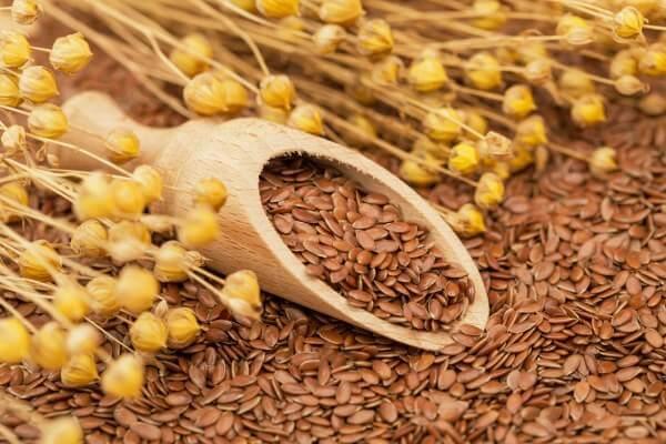 Hạt Lanh - Tên tiếng Anh Flax Seeds tốt cho mẹ bầu