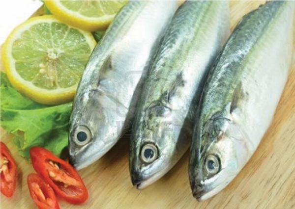 5 món ngon từ cá nục, cá nục làm món gì ngon nhất, đơn giản dễ chế biến