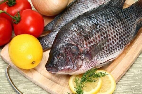 10 món ngon từ cá rô phi, cách nấu cá rô phi kho dưa chua, sốt cà chua, kho với nghệ ngon cơm gia đình