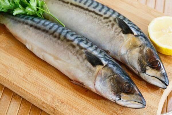 7 cách chế biến cá thu, các món ngon từ cá thu, cá thu Nhật Bản làm gì ngon