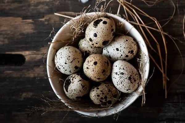 8 món ngon từ trứng cút, trứng cút lộn, cách làm món ăn từ trứng cút cho bé
