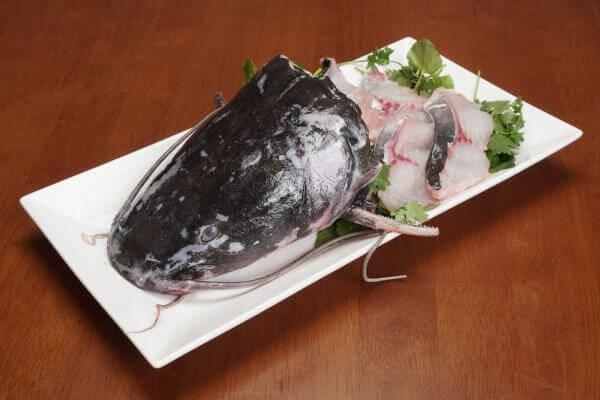 Những món ngon từ cá lăng, cách chế biến cá lăng ngon cơm, lạ miệng