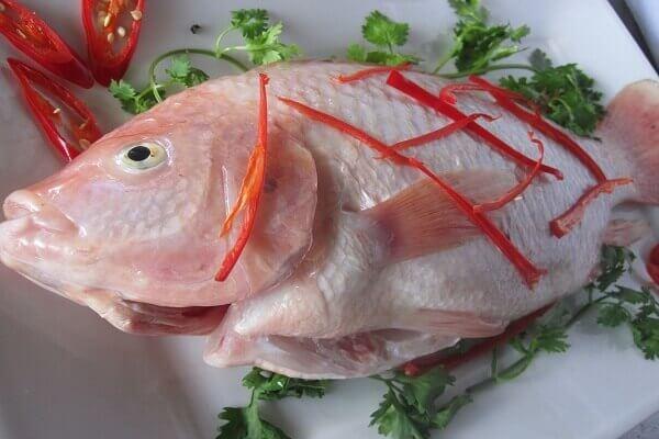 Cá diêu hồng 1 con