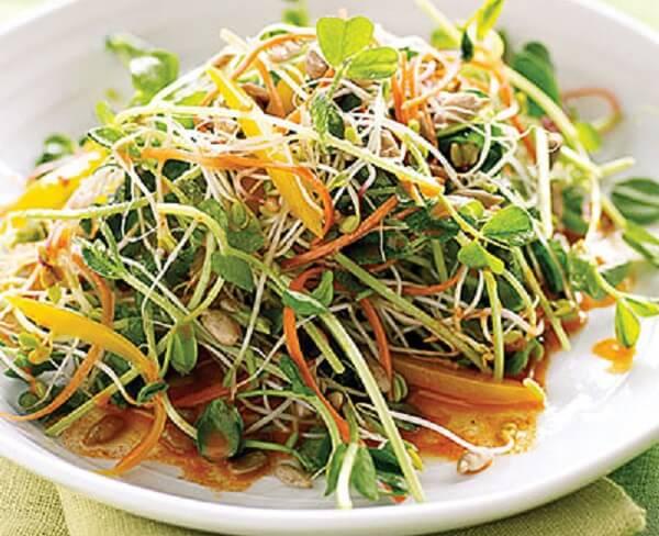 Nguyên liệu làm món salad rau mầm này rất đơn giản