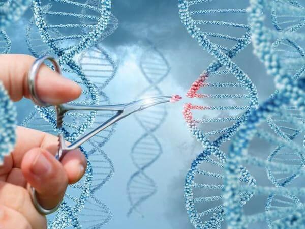 Xét nghiệm NIPT, phân tích ADN của thai phụ thay vì phân tích máu