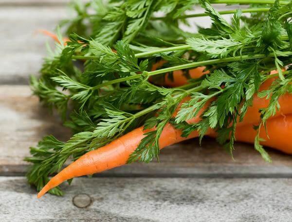 Nước ép cà rốt mật ong không chỉ làm đẹp da, tóc khỏe, móng khỏe mà còn rất tốt cho hệ tiêu hóa