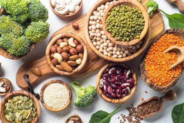 Protein kích thích sự thèm ăn và vì thế nó giữ vai trò chính tiếp nhận các chế độ ăn