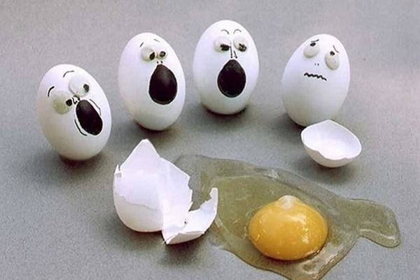 [GMGM] Mơ thấy trứng gà, trứng vịt và điềm báo, mơ thấy trứng ngỗng, trứng rắn, trứng gà đánh con gì may mắn?