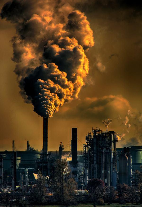 Thực trạng ô nhiễm môi trường ở Việt Nam và các nước nhiệt đới ôn hòa