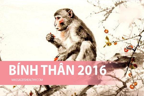 [Bính Thân 2016] Sinh năm 2016 mệnh gì tuổi gì hợp hướng nào Tử vi trọn đời tuổi Bính Thân