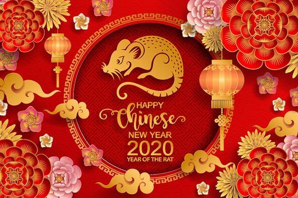 Sinh năm 1960 là cầm tinh tuổi con Chuột (Canh Tý). Năm sinh tính theo dương lịch: Từ ngày 28/01/1960 đến ngày 14/02/1961. Năm sinh tính theo âm lịch: Canh Tý.