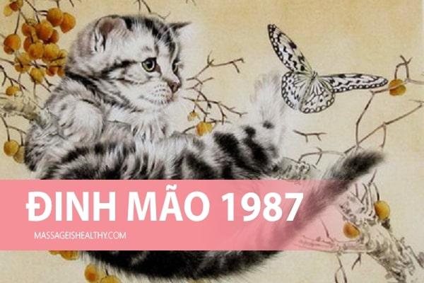 [Đinh Mão 1987] Sinh năm 1987 mệnh gì tuổi con gì, hợp hướng nào, năm nay bao nhiêu tuổi?