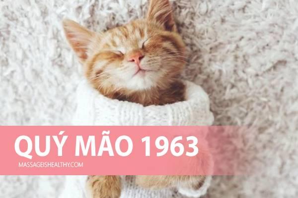 [Quý Mão 1963] Sinh năm 1963 mệnh gì tuổi con gì hợp màu gì, sinh năm 63 năm nay bao nhiêu tuổi?