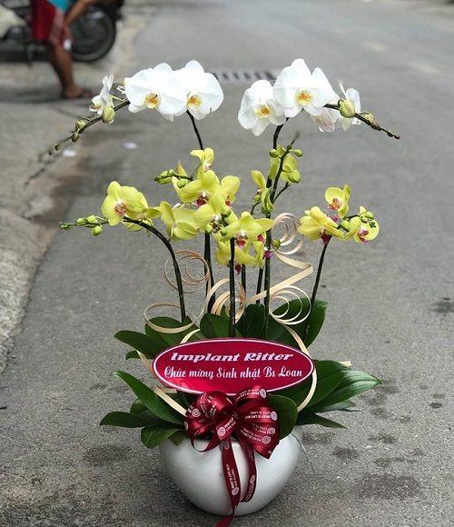 Cửa hàng lan hồ điệp Biên Hòa cam kết giao hoa đến địa chỉ mà khách hàng yêu cầu theo đúng thời gian đã hẹn.