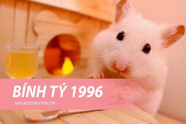 [Bính Tý 1996] Sinh năm 1996 mệnh gì, tuổi con gì, sinh năm 1996 hợp với tuổi nào, hợp hướng nào?