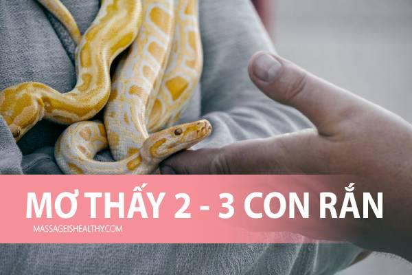 [GMGM] Mơ thấy 2 Con Rắn 3 Con Rắn báo điềm gì, nằm mơ thấy 2 3 con rắn đánh con gì chính xác đến 99%