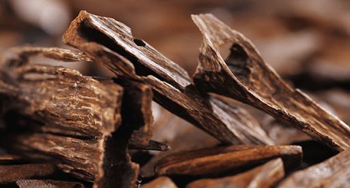 Khối gỗ nào có chứa nhiều dầu trầm hương thì giá trị tài sản của nó càng cao