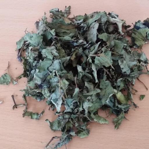 (Bạn có thể tự pha trà diếp cá tại nhà với lá khô hoặc lá tươi)