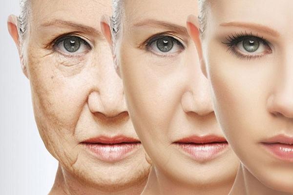 Tìm hiểu về lão hóa da: Nguyên nhân, biểu hiện và các phương pháp làm chậm quá trình lão hóa