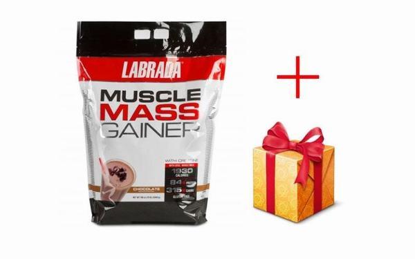 Muscle Mass Gainer, sữa tăng cân hoàn hảo cho người gầy