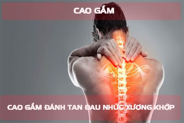 Trị đau nhức xương khớp bằng cao gắm là sự lựa chọn thông minh