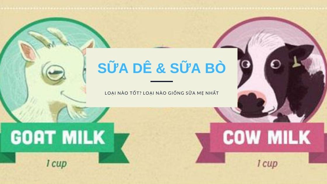 Sữa dê và sữa bò loại nào tốt? Sữa nào giống sữa mẹ nhất? 1