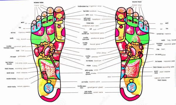 12 bước massage chân và lợi ích đối với cơ thể 13